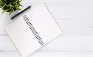 Notebook open on two empty pages, with a pen and small green plant in a pot